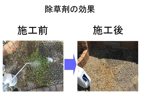 除草剤散布の効果